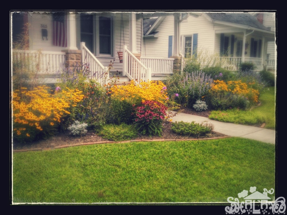 old lady's garden in #Denton,MD from Shalavee.com