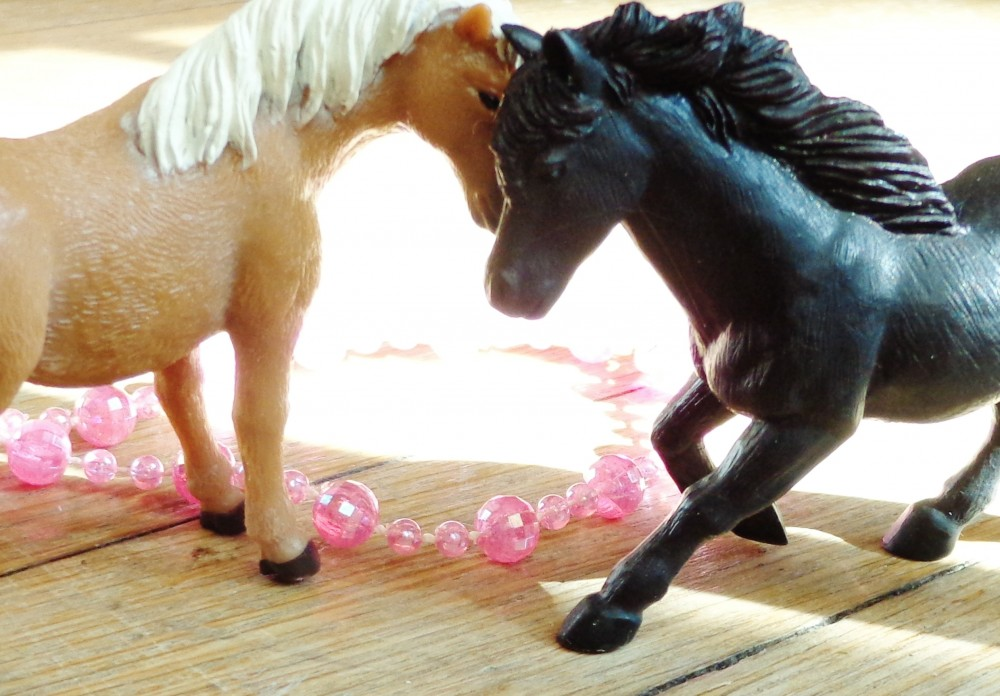 neigh neighs in love on Shalavee.com