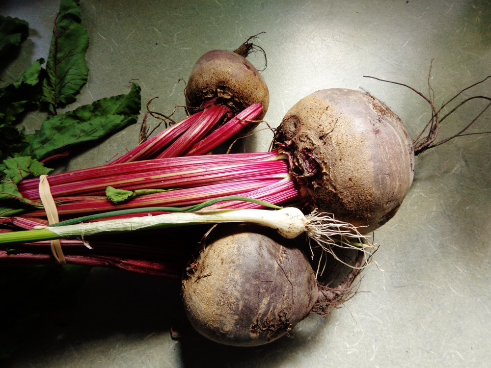 beets and a ramp on Shalavee.com