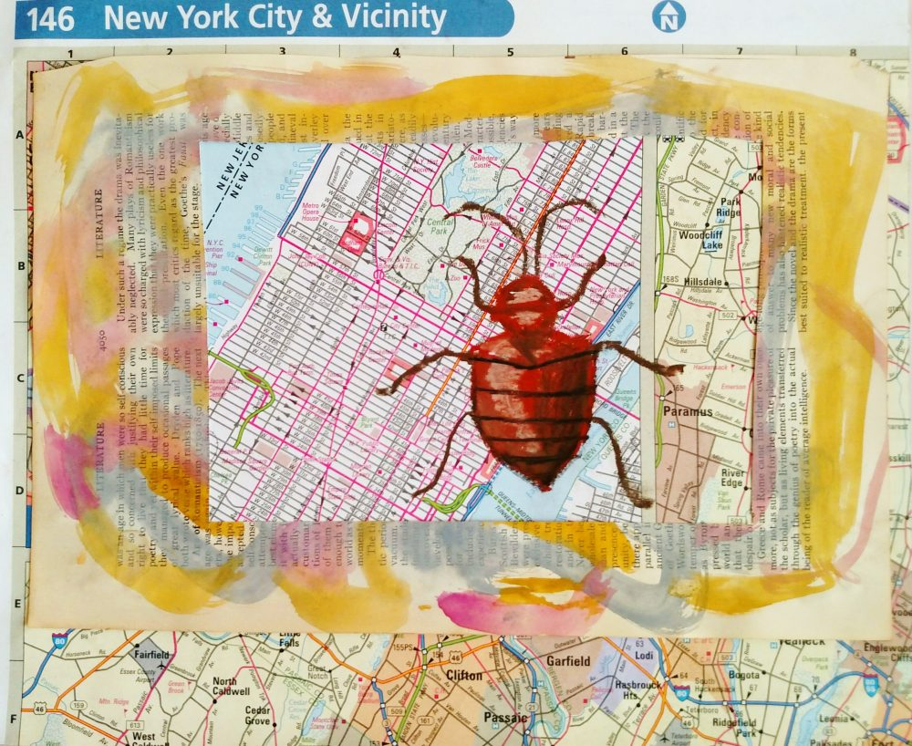 bed-bug-over-long-island on my third week of creativity on Shalavee.com